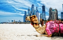 Five reasons you should visit Dubai